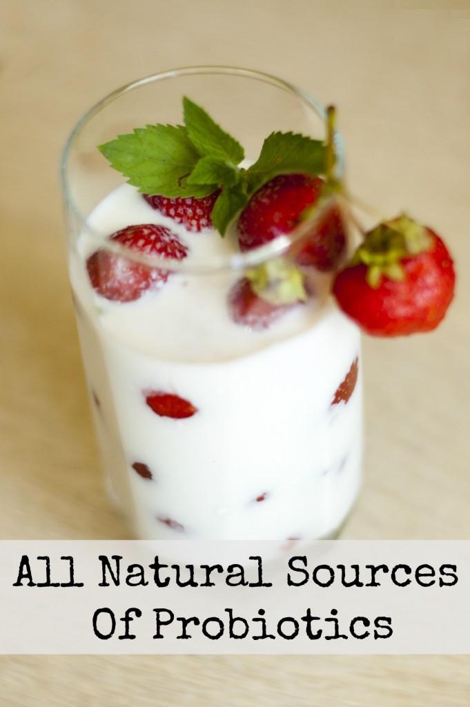 All Natural Sources Of Probiotics