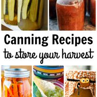 Canning Recipes to Store Your Harvest