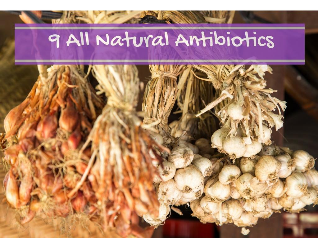 9-all-natural-antibiotics