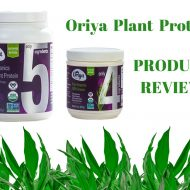 Tropical Breakfast Protein Smoothie with Oriya Organics Plant Protein