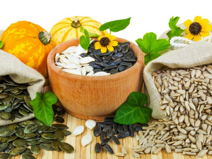 Top 10 Plant Based Protein Sources