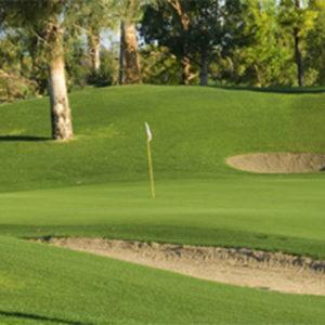 Golf Hole Backdrop