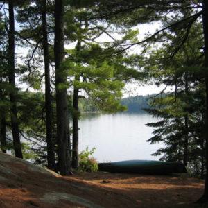 Camping backdrop