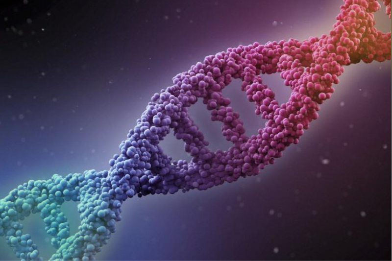 Study Shows Gay Gene Can't Be Found, Last Seen In Bathroom Asking Around For Molly