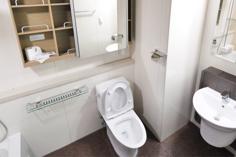 New Study Finds Dirtiest Place In Your Bathroom Is Your Mind, You Sicko
