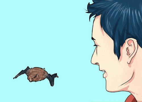 How to Dodge a Gay Rights Debate at Thanksgiving By Releasing a Live Bat From Your Mouth