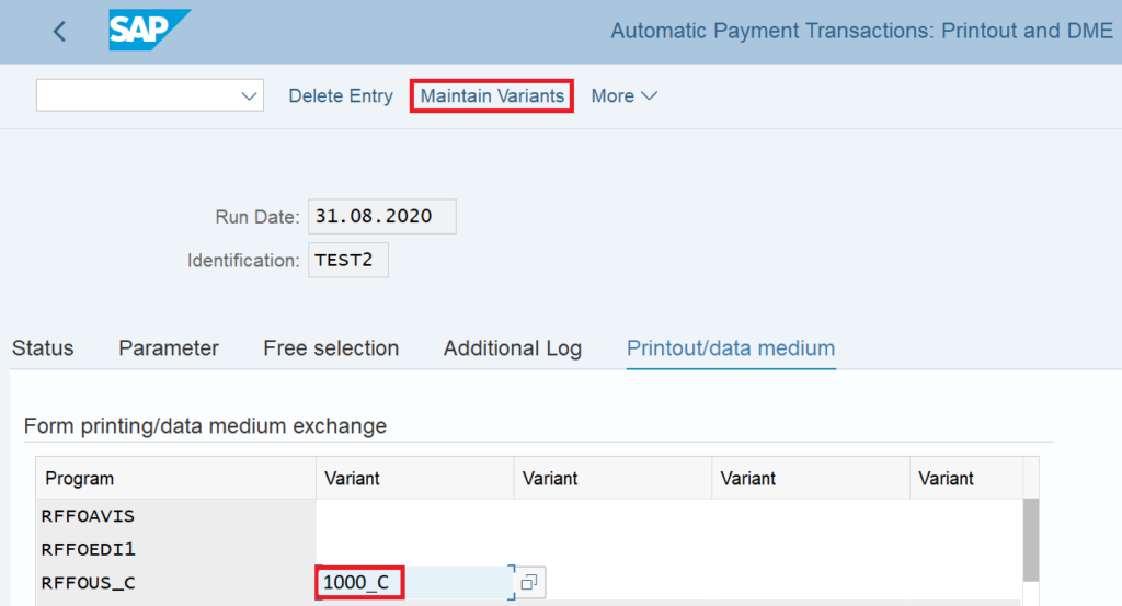 Automatic Payment Program: Enter Variant