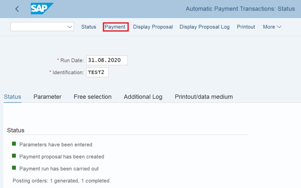 F110 in SAP: Payment Run