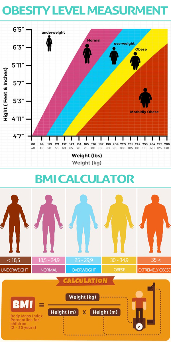 measure the obesity level