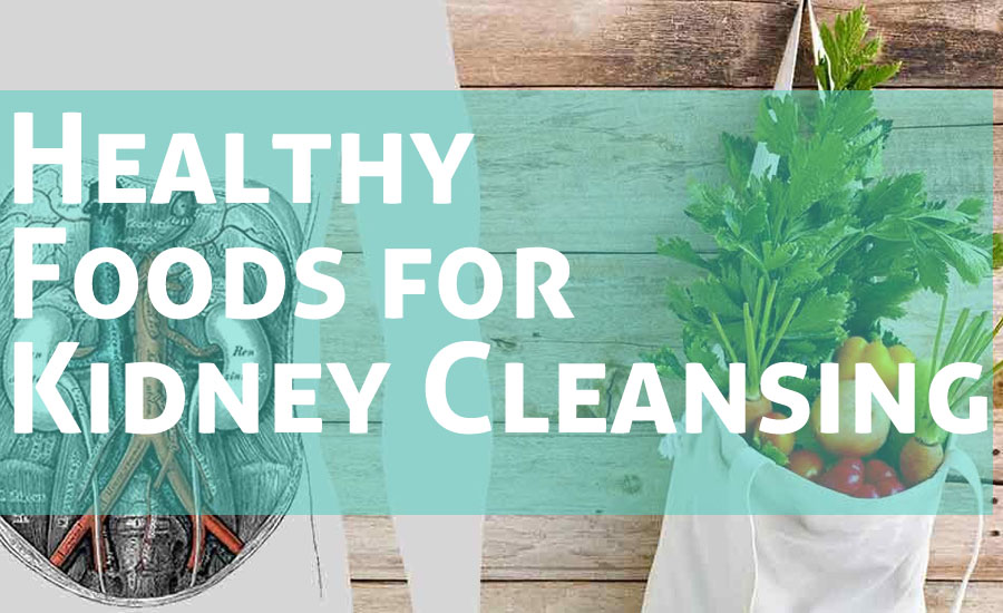 10 Healthy Foods for Kidney Cleansing and Repair
