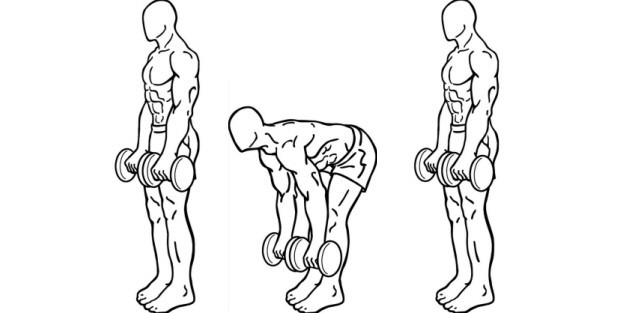 Stiff Legged Deadlift