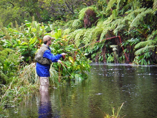 Waikahe Olu Trout Unlimited