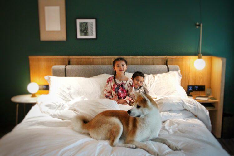 Kimpton Da An Hotel, Taipei