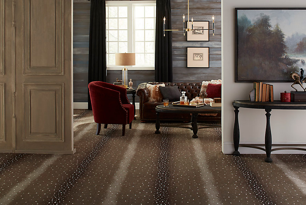 paracca_flooring_product_karastan_savanna_scenes_ashen_antelope