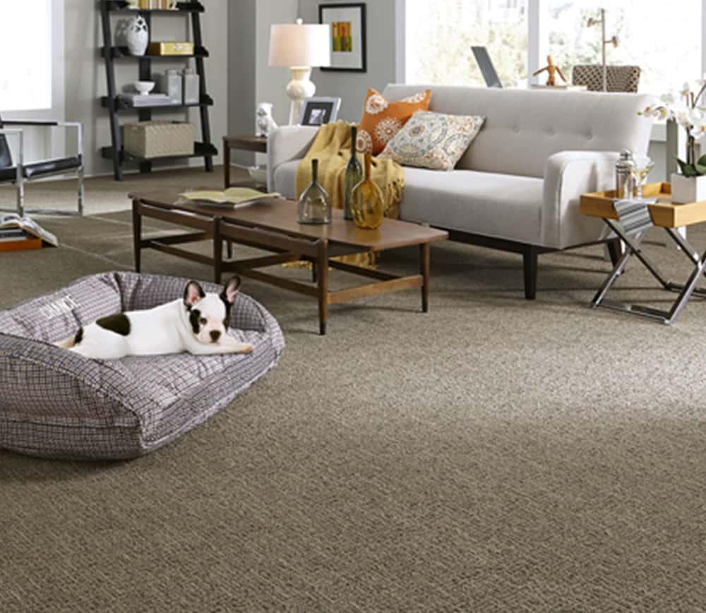paracca_flooring_product_tuftex_chance