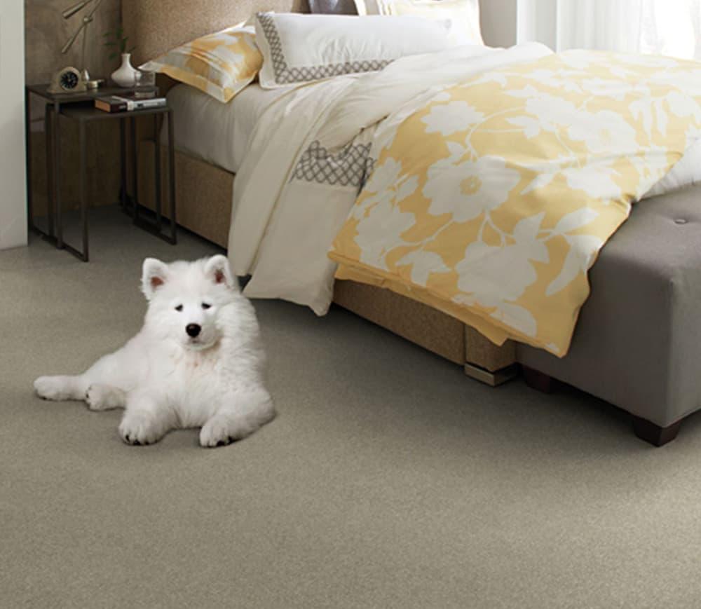 paracca_flooring_product_tuftex_cooper_sasha