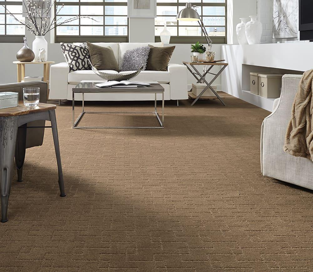 paracca_flooring_product_tuftex_terra_bella