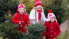 Kids at Tennessee Christmas Tree Farm
