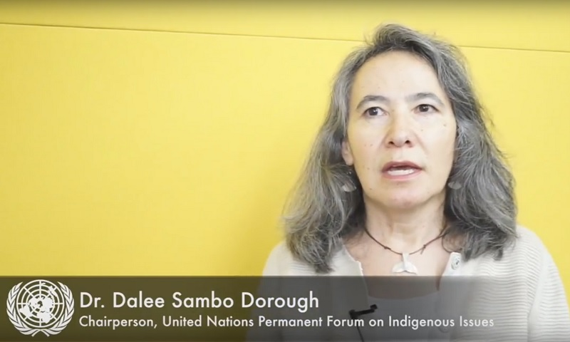 Interview with Dr. Dalee Sambo Dorough, Chair, UNPFII 13