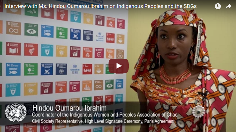 Interview with Hindou Oumarou Ibrahim on Indigenous Peoples and the SDGs