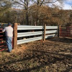 Used Guardrail and our New LiveStock Steel panels match up perfectly
