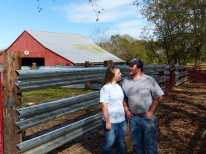Young Farmers use LiveStock Steel Guardrail Panels