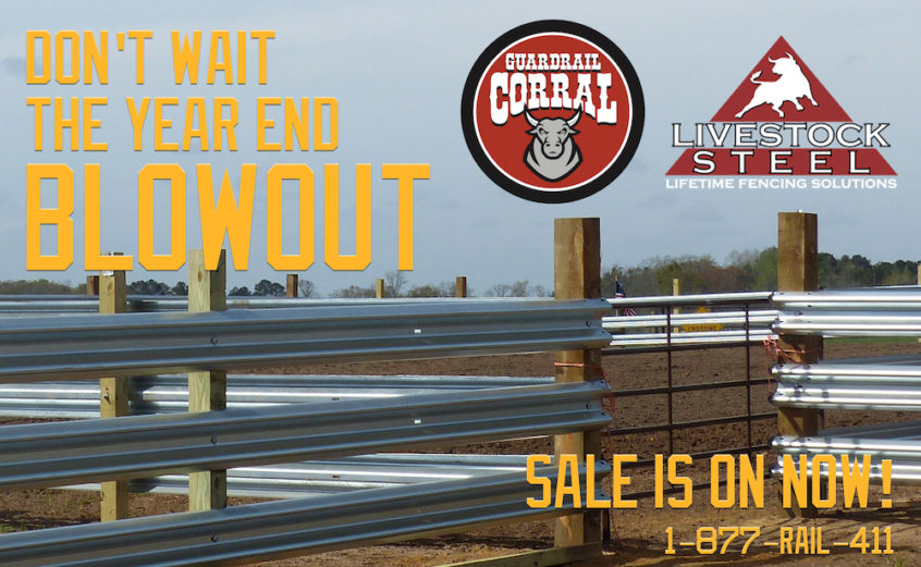 Guardrail Sale