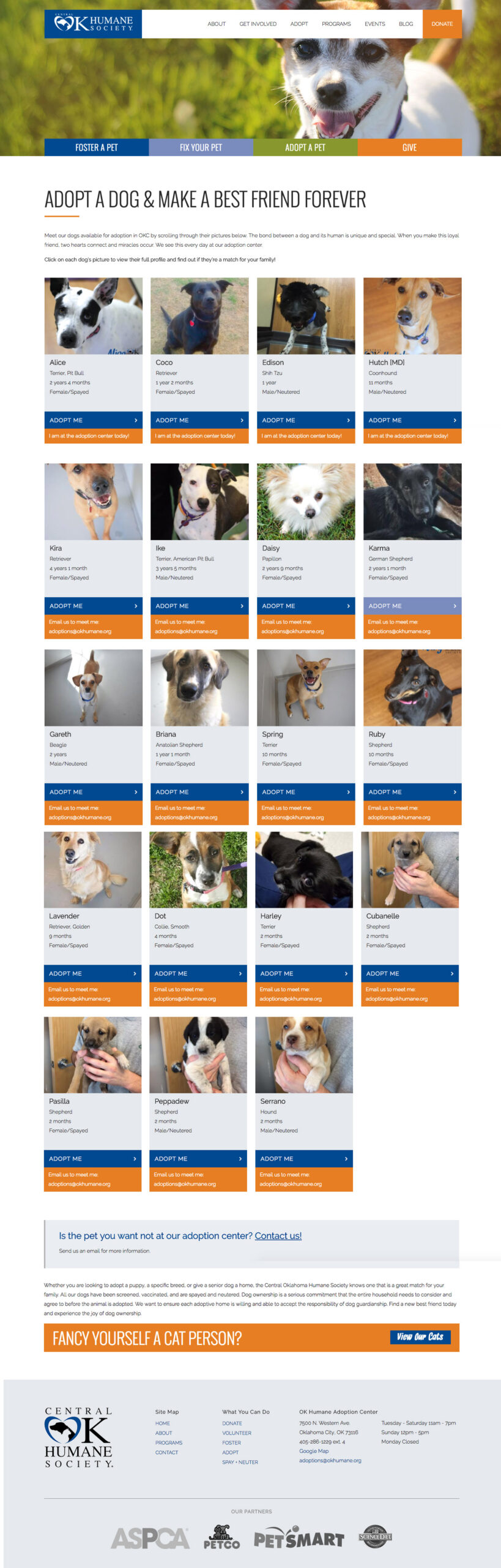 Screenshot for dogs available for adoption