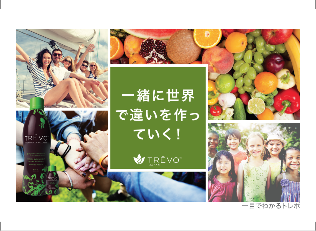 Print piece example for a Japanese version of a marketing piece
