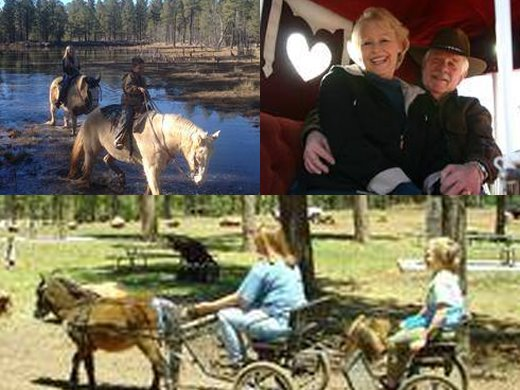 Pinetop Lakes Activity Center & Stables