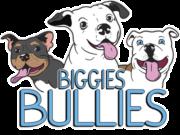 Biggie's Bullie's Logo