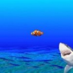 shark fixation
