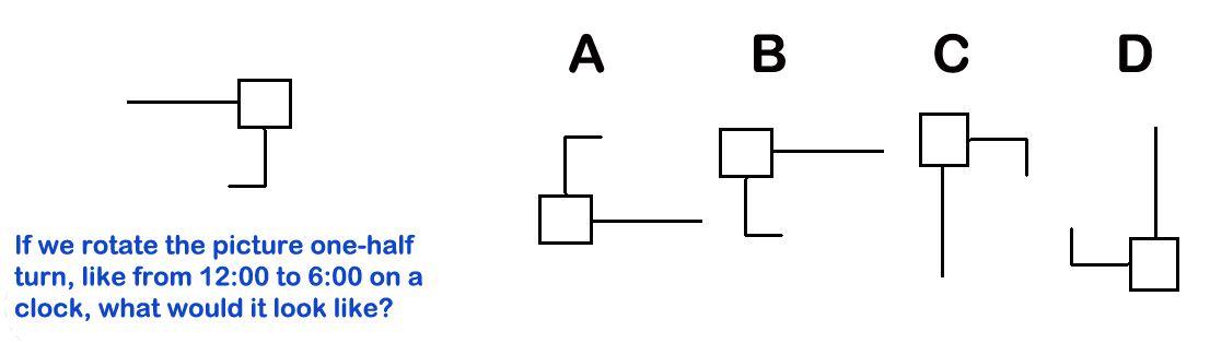 Fig 3 Rotation 180 degree