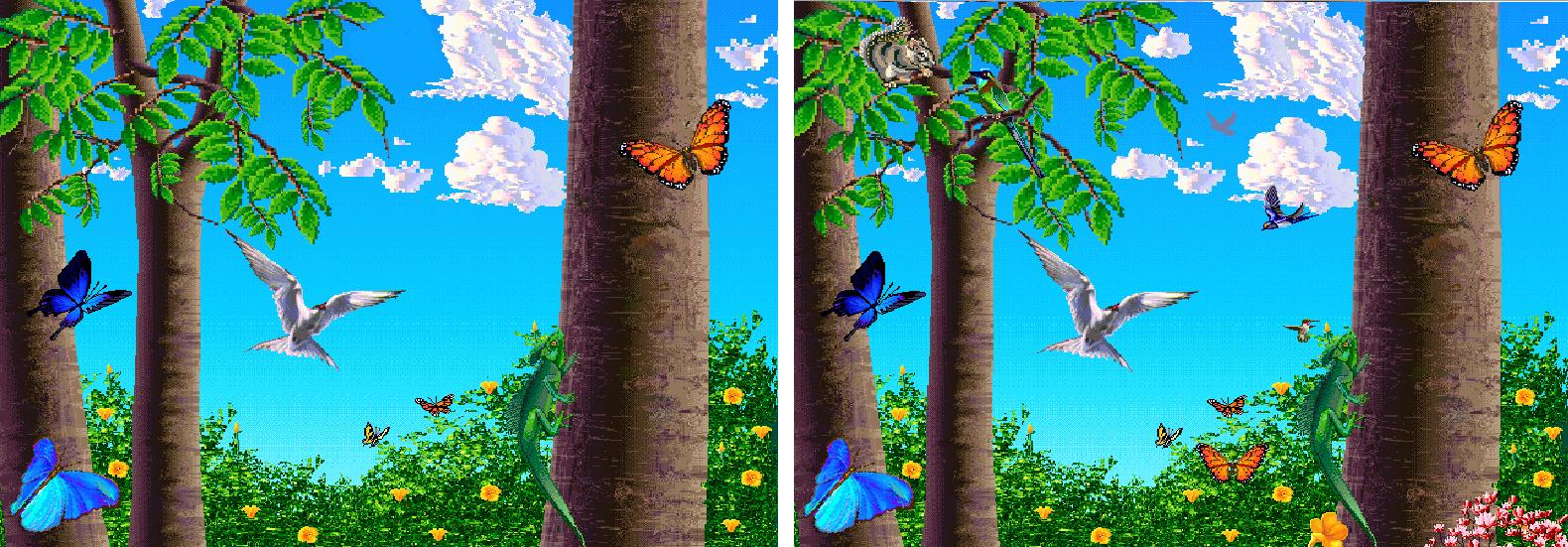 butterflies 2x