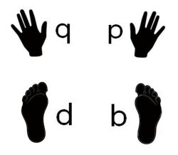 hand and feet bdpq