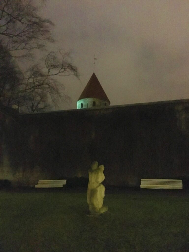 estonian park at night