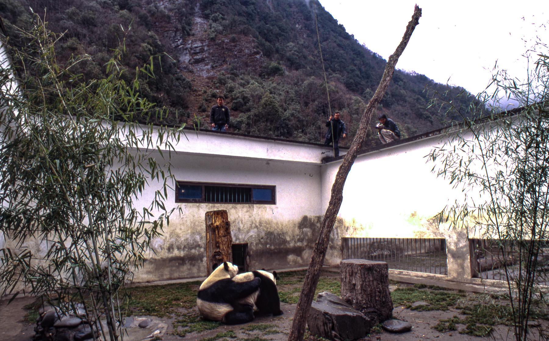 Pandas010