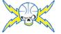 Team Voltage Basketball