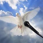 Espíritu Santo niega cualquier relación con el Partido MIRA