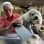 Amigos imaginarios, gatos y perros podrán votar plebiscito de la paz