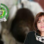 Madurando aguacates encuentran informe de comisión de alto nivel para la Policía