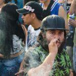 Cambio en variedad de marihuana entre causas de contaminación en Medellín