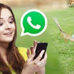 Mamá deja correr a niño con tijeras «porque lo vio en el whatsapp»