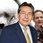 Fiscal captura perrita que no se dejó montar de perro de Vargas Lleras