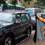 Gran preocupación por ácaro que está acabando con camionetas 4×4 blindadas