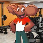 Pérdida de peso del elefante de Choco Krispis causa preocupación por su salud