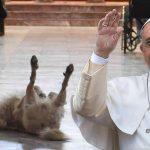 Papa Francisco aprueba iglesias pet friendly