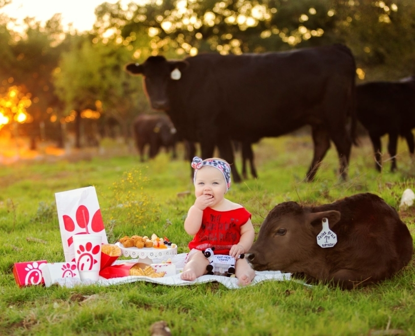 Baby girl sitting on blanket next to baby cow