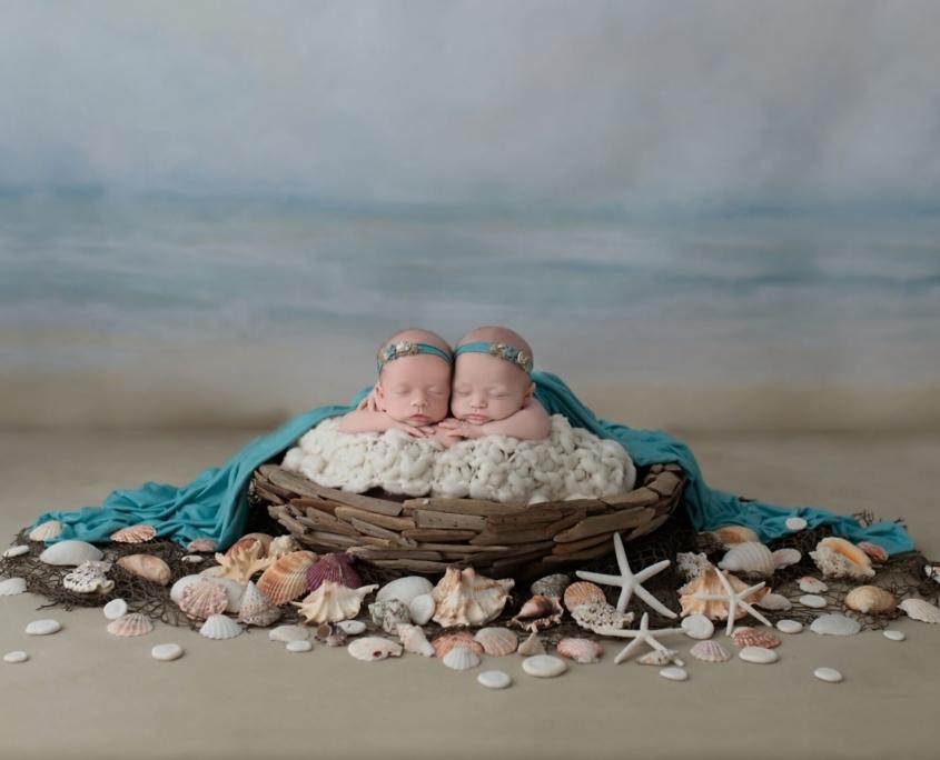 Newborn twins in basket