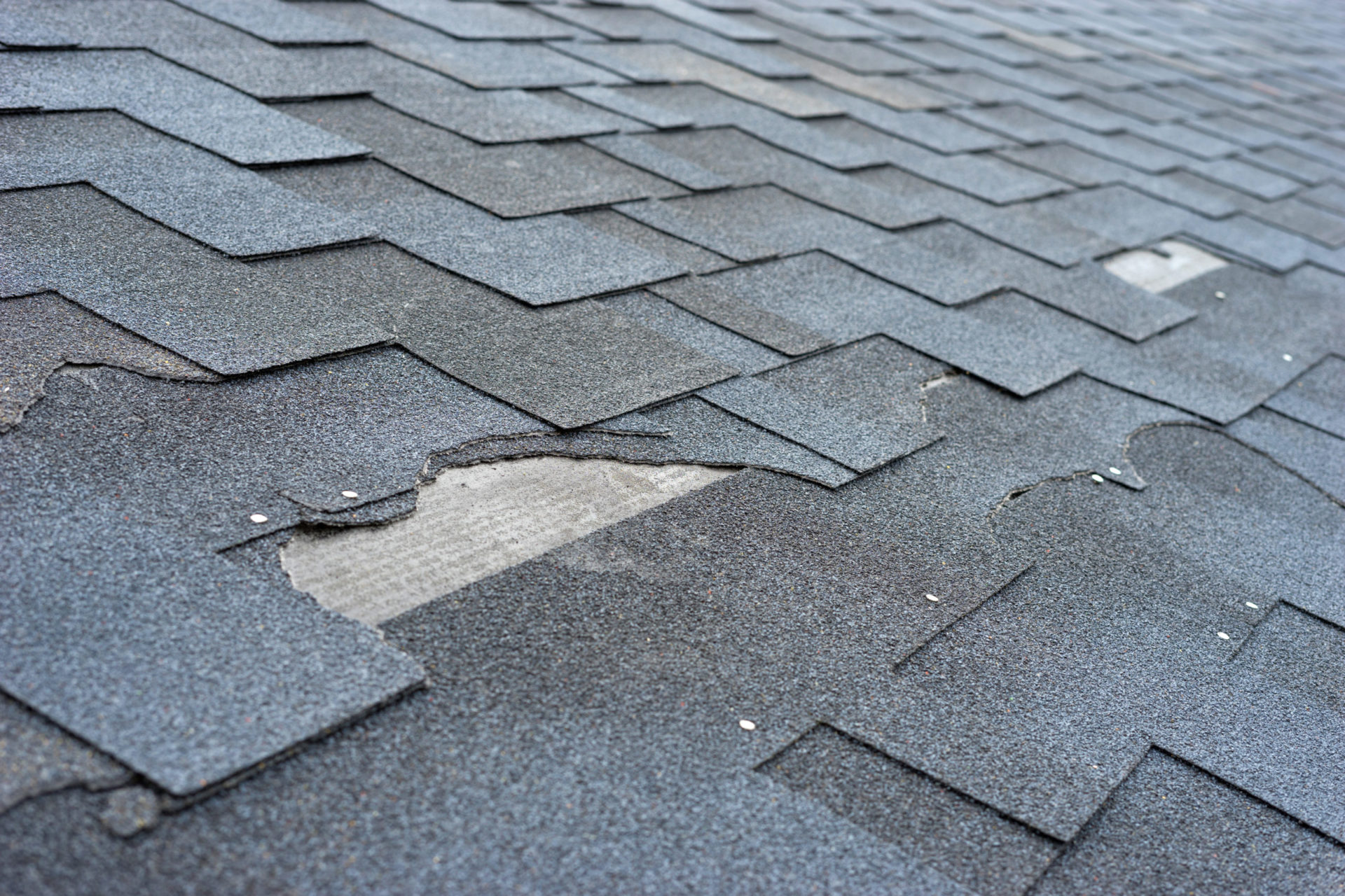 roof replacement st louis